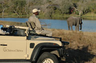 African Safari Accommodation Booking Chitwa Chitwa Game Lodge Sabi Sand Game Reserve