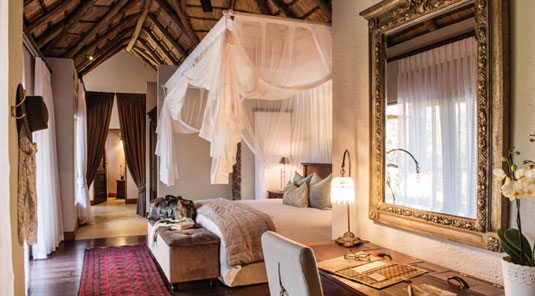 Luxury Suite Dulini Safari Lodge Sabi Sand Game Reserve South Africa Luxury Safari Lodge Bookings