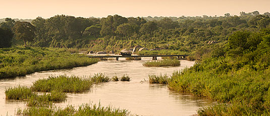 Sabie River Lion Sands Tinga Lodge Sabi Sand Private Game Reserve Accommodation Booking