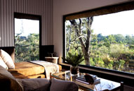 Luxury South African Safari Pioneer Camp Londolozi Game Reserve Sabi Sand Private Game Reserve