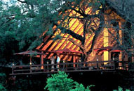 Luxury South African Safari Varty Camp Londolozi Game Reserve Sabi Sand Private Game Reserve