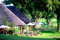 Game Lodge Bookings Main Camp Mala Mala Lodges Sabi Sand Private Game Reserve Accommodation Booking
