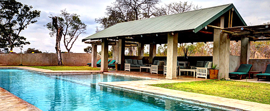 Swimming Pool Pavilion Nottens Bush Camp Nottens Private Game Reserve Sabi Sands Game Reserve Safari Lodge bookings