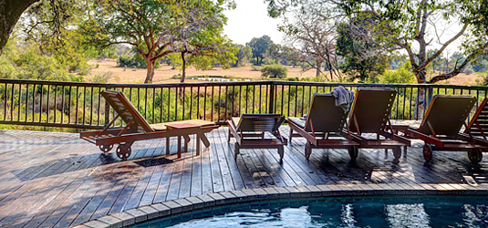 Sabi Sabi Swimming Pool View Bush Lodge Luxury Accommodation Sabi Sabi Private Game Reserve Sabi Sands Reserve