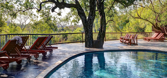 Sabi Sabi Swimming Pool Bush Lodge Luxury Accommodation Sabi Sabi Private Game Reserve Sabi Sands Reserve