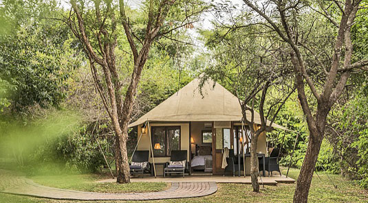 Luxury Tented Suite Luxury Accommodation Savanna Private Game Reserve Sabi Sands Reserve Accommodation bookings
