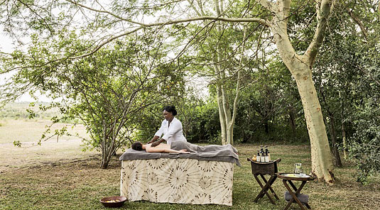 Sabi Sands Savanna Private Game Lodge Spa massage Luxury African Safari Accommodation Sabi Sands Game Reserve