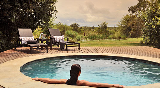 Savanna Suite Swimming pool Luxury Accommodation Savanna Private Game Reserve Sabi Sands Reserve Accommodation bookings