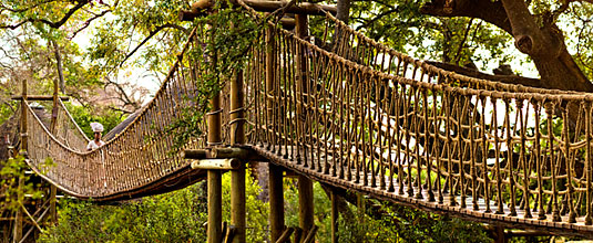 Swing Bridge to Tree House Safari Lodge at Ulusaba Private Game Reserve - Sabi Sand Private Game Reserve