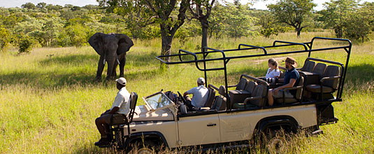 Ulusaba Game Drives Elephant Sighting Ulusaba Private Game Reserve Sabi Sand Private Game Reserve